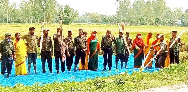 দিনাজপুরে কৃষকের ধান কেটে দিলো আনসার-ভিডিপির সদস্যরা